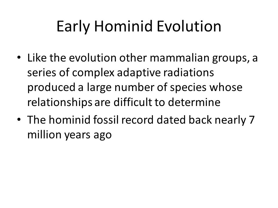 Early Hominid Evolution