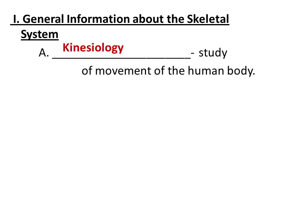 I. General Information about the Skeletal System A
