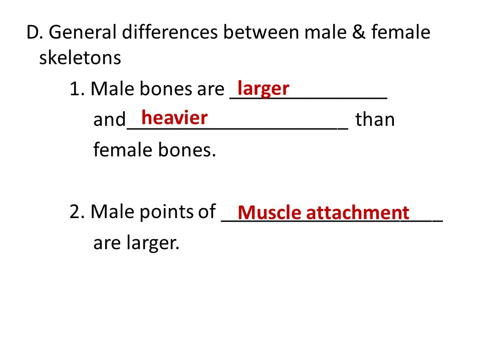 D. General differences between male & female skeletons 1