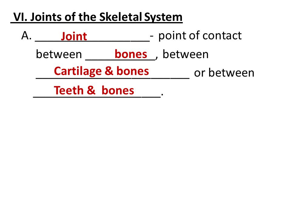 VI. Joints of the Skeletal System A