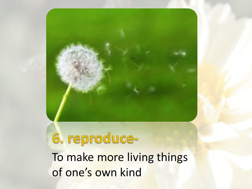 6. reproduce- To make more living things of one's own kind