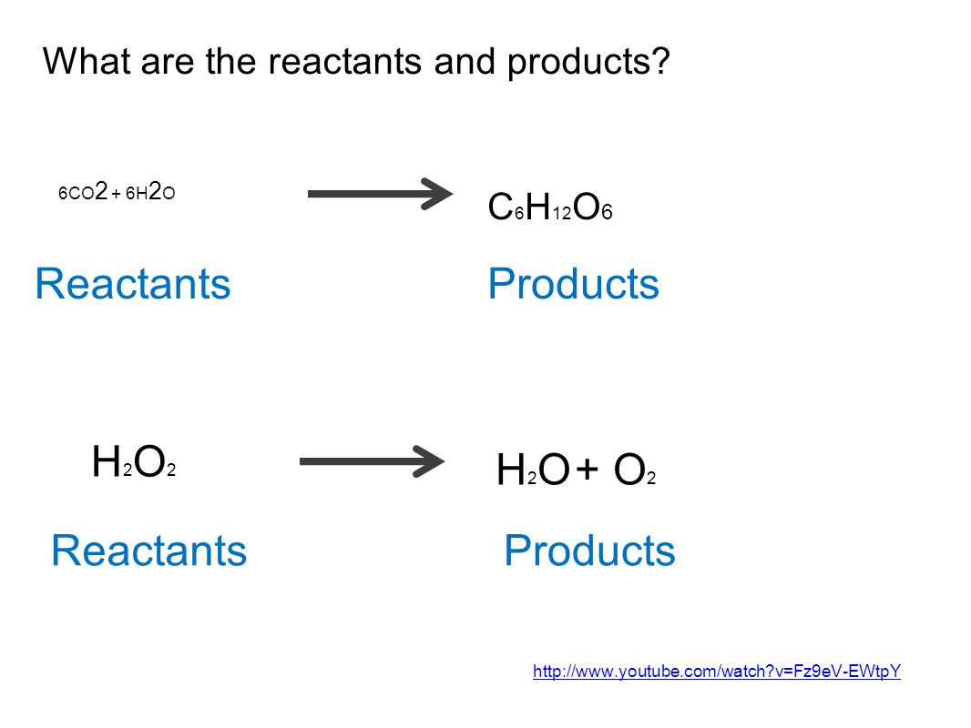 What are the reactants and products