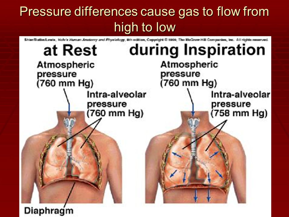 Pressure differences cause gas to flow from high to low
