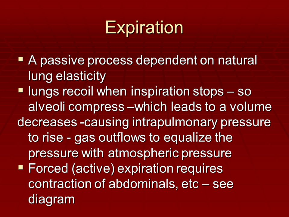 Expiration A passive process dependent on natural lung elasticity