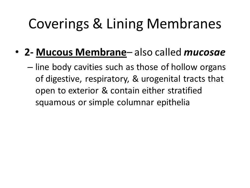 Coverings & Lining Membranes