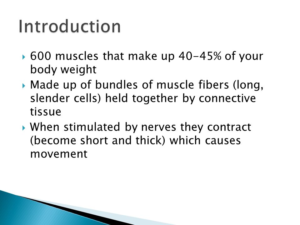 Introduction 600 muscles that make up 40-45% of your body weight