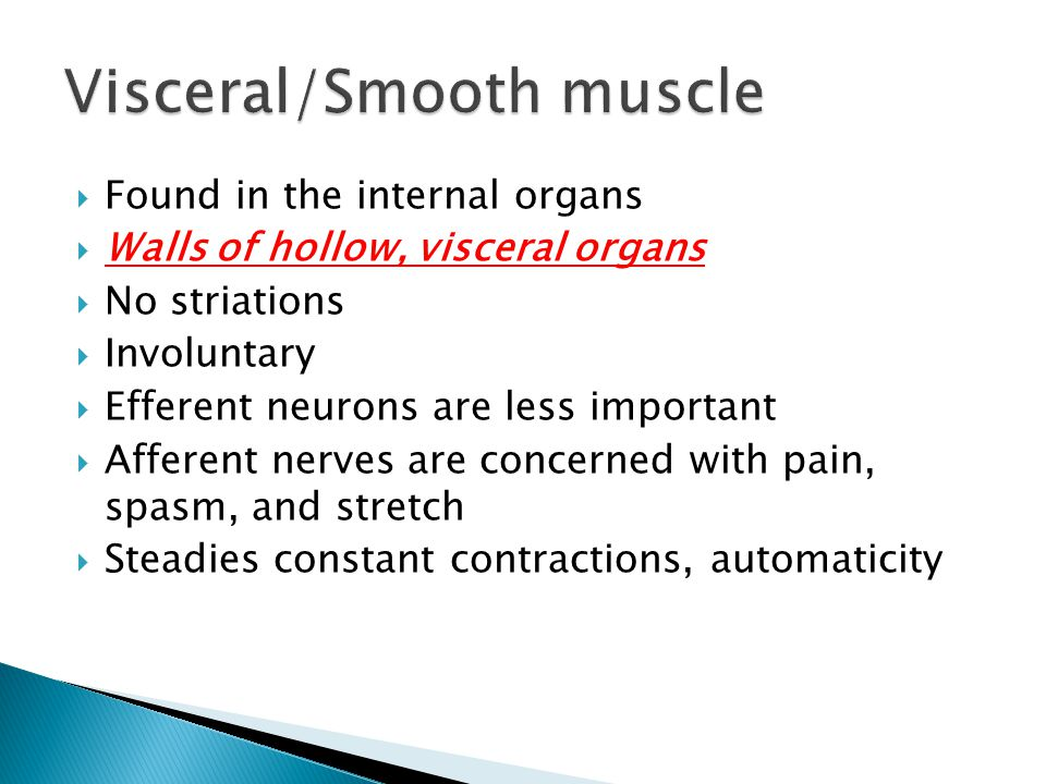 Visceral/Smooth muscle