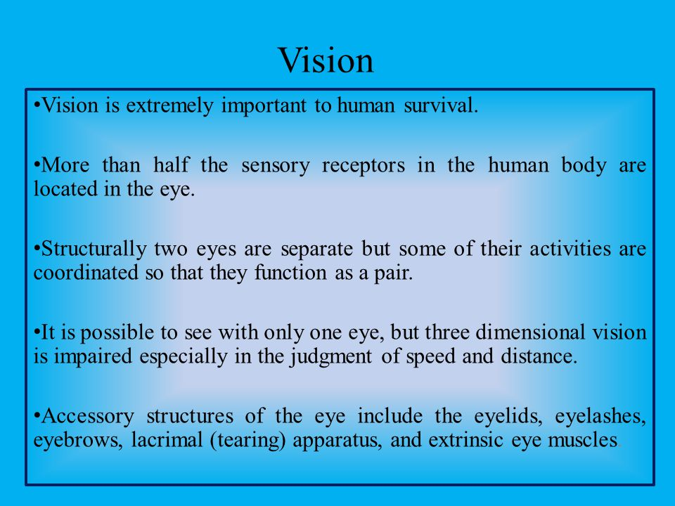 Vision Vision is extremely important to human survival.