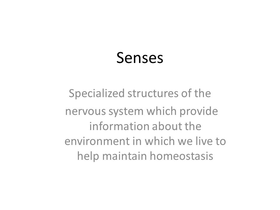 Specialized structures of the
