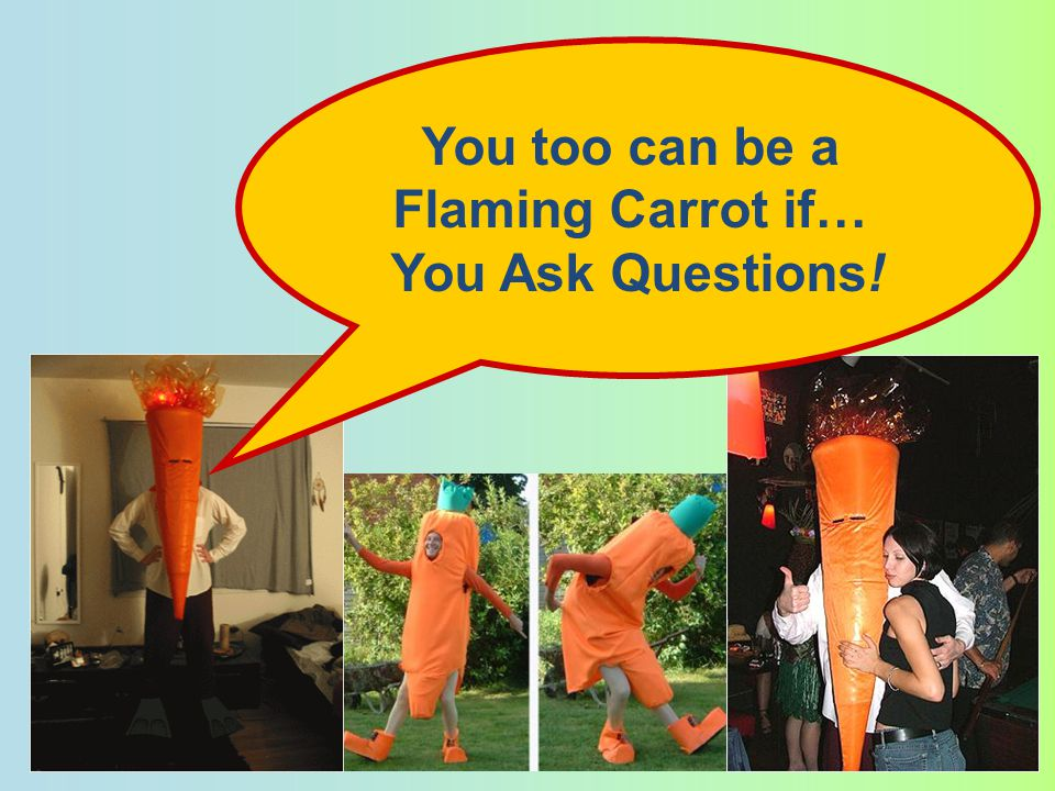 You too can be a Flaming Carrot if… You Ask Questions!