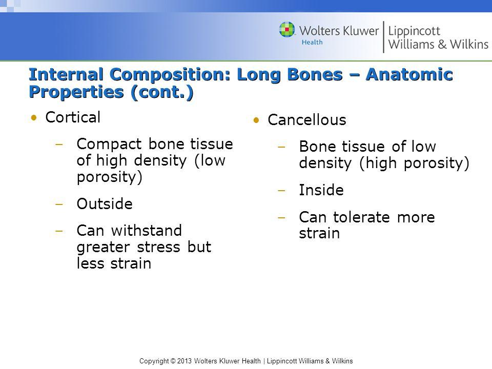 Internal Composition: Long Bones – Anatomic Properties (cont.)