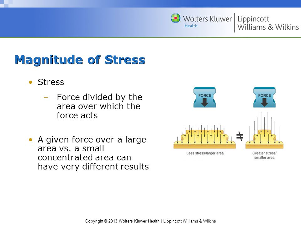 Magnitude of Stress Stress