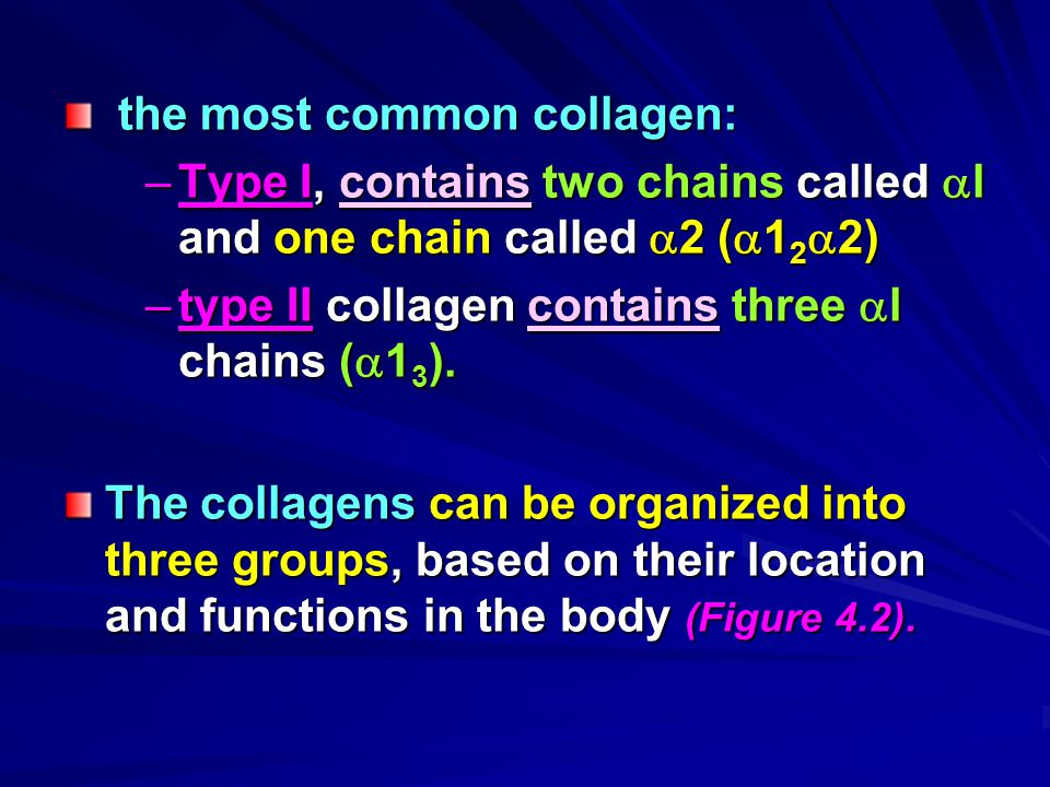 the most common collagen: