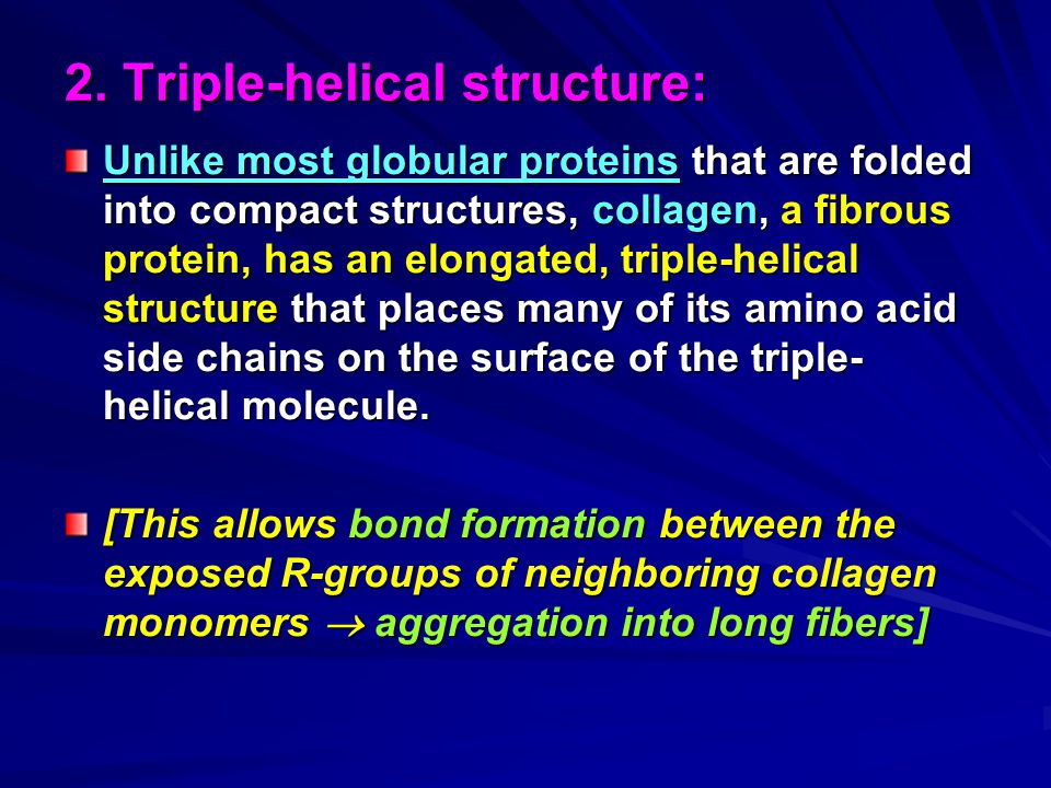 2. Triple-helical structure: