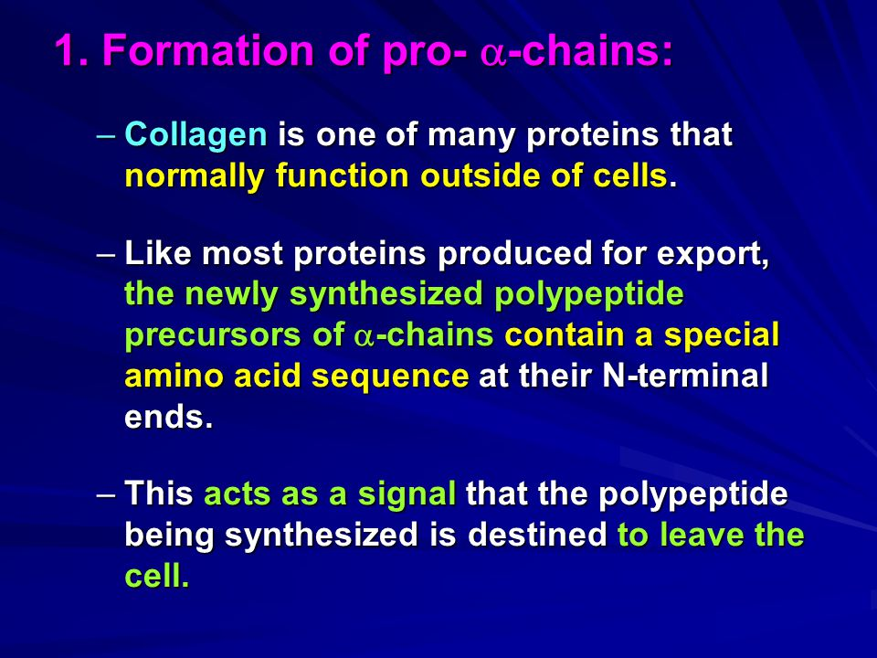 1. Formation of pro- -chains: