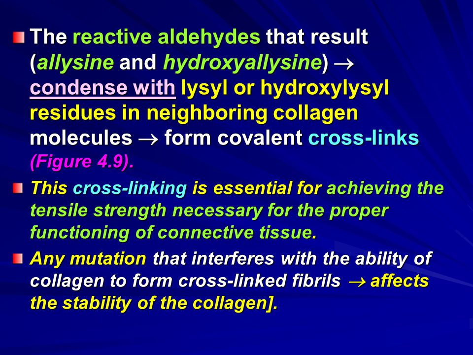 The reactive aldehydes that result (allysine and hydroxyallysine)  condense with lysyl or hydroxylysyl residues in neighboring collagen molecules  form covalent cross-links (Figure 4.9).