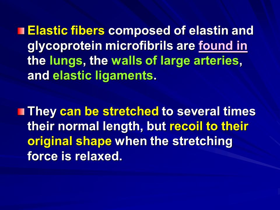 Elastic fibers composed of elastin and glycoprotein microfibrils are found in the lungs, the walls of large arteries, and elastic ligaments.