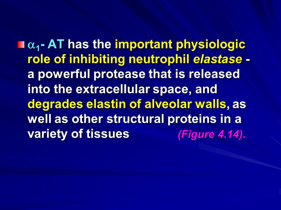 1- AT has the important physiologic role of inhibiting neutrophil elastase - a powerful protease that is released into the extracellular space, and degrades elastin of alveolar walls, as well as other structural proteins in a variety of tissues (Figure 4.14).