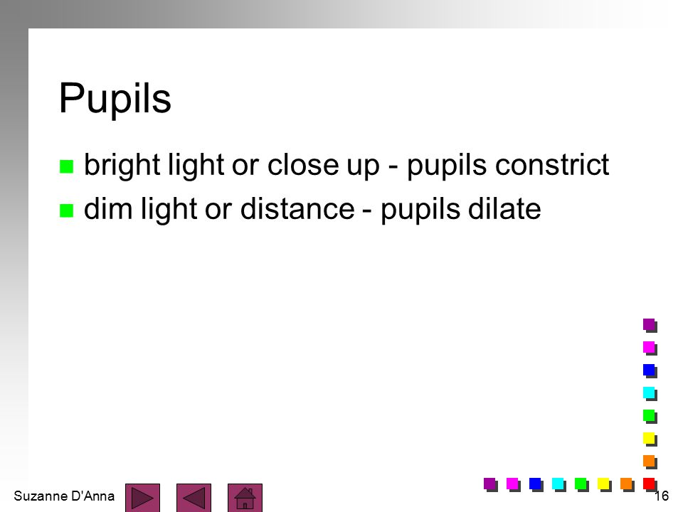 Pupils bright light or close up - pupils constrict