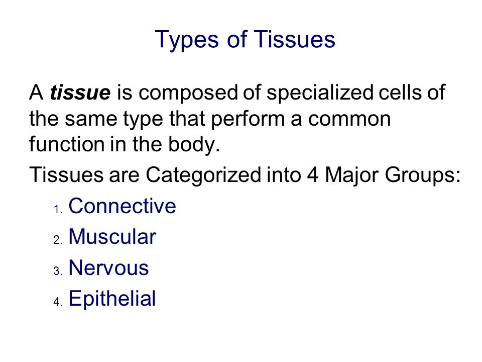 Types of Tissues A tissue is composed of specialized cells of the same type that perform a common function in the body.