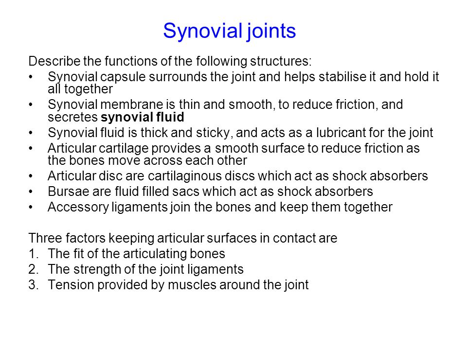 Synovial joints Describe the functions of the following structures: