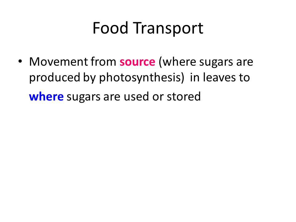 Food Transport Movement from source (where sugars are produced by photosynthesis) in leaves to.