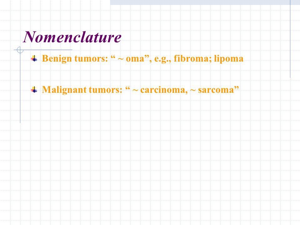 Nomenclature Benign tumors: ~ oma , e.g., fibroma; lipoma