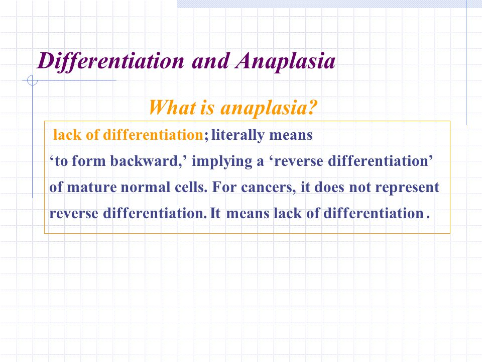Differentiation and Anaplasia