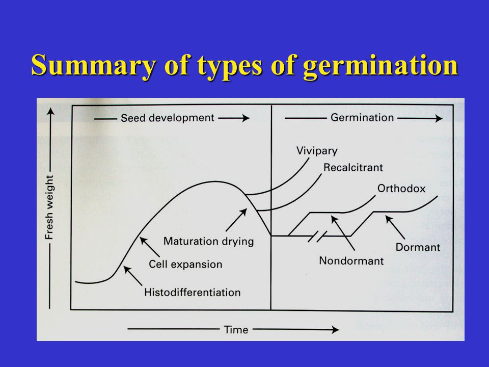 Summary of types of germination