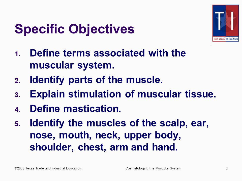 Specific Objectives Define terms associated with the muscular system.