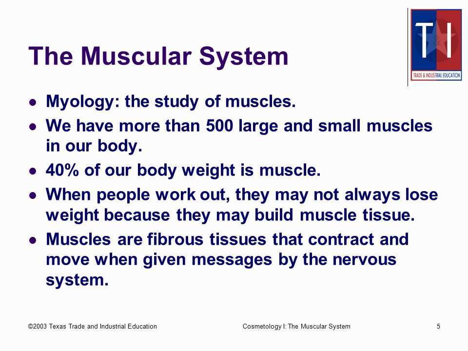 The Muscular System Myology: the study of muscles.