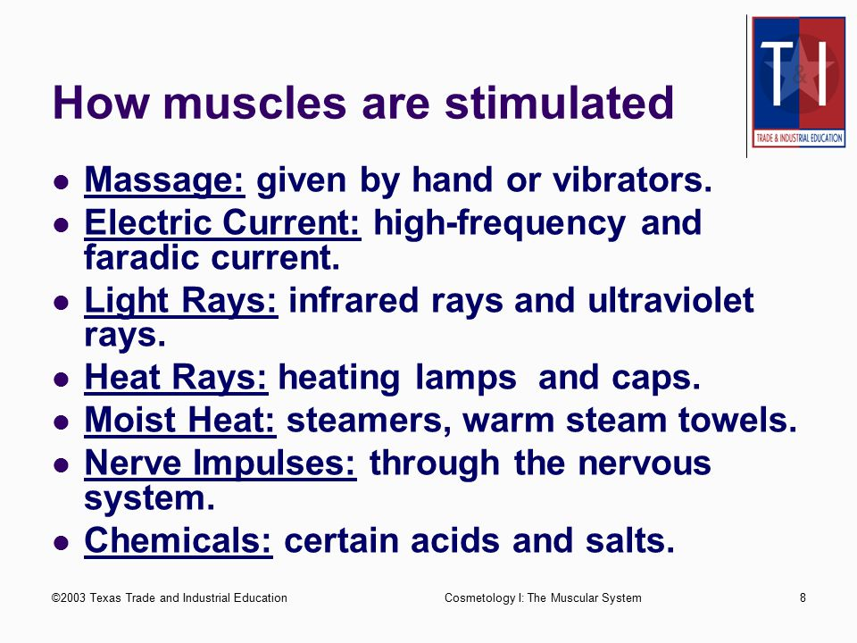 How muscles are stimulated