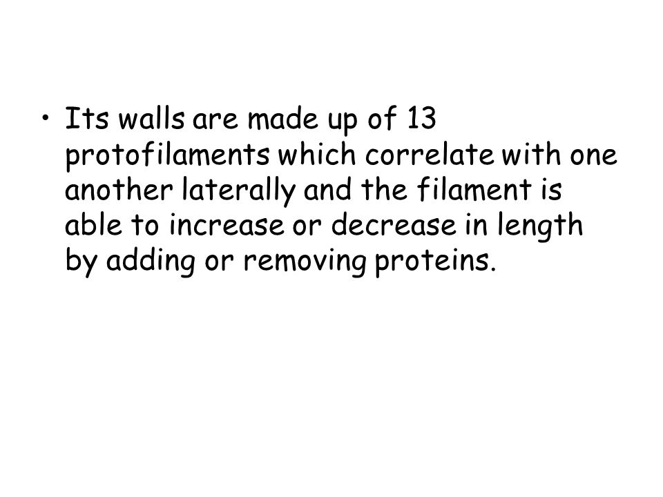 Its walls are made up of 13 protofilaments which correlate with one another laterally and the filament is able to increase or decrease in length by adding or removing proteins.