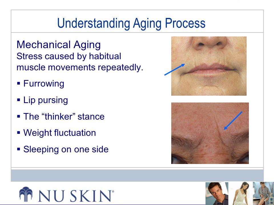 Understanding Aging Process