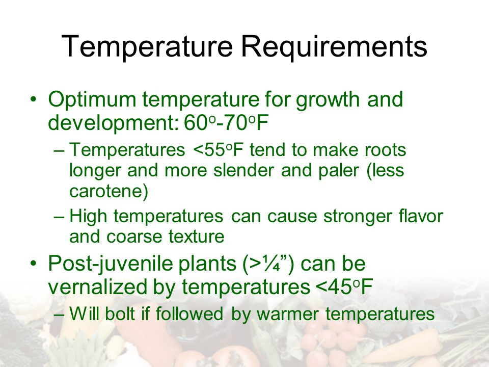 Temperature Requirements