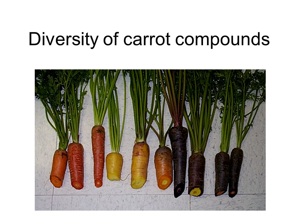 Diversity of carrot compounds