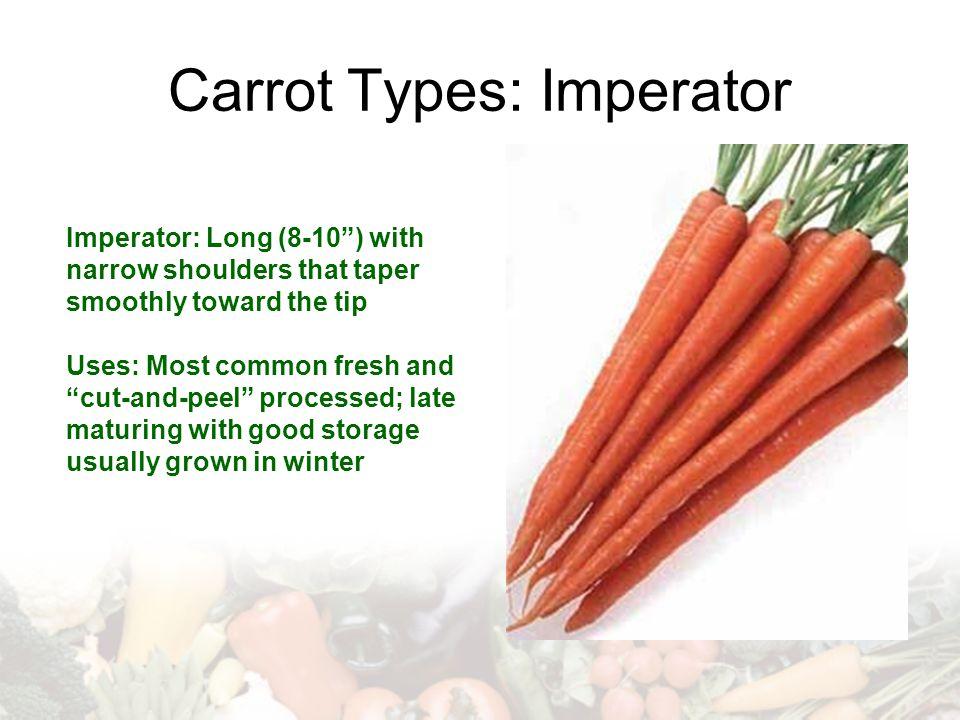 Carrot Types: Imperator