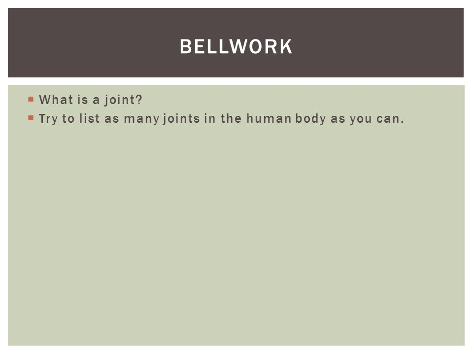 bellwork What is a joint