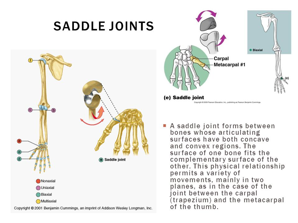 Saddle joints
