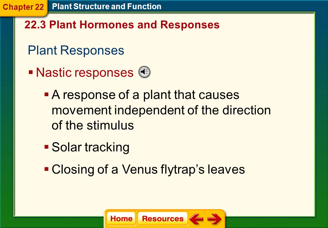 Closing of a Venus flytrap's leaves