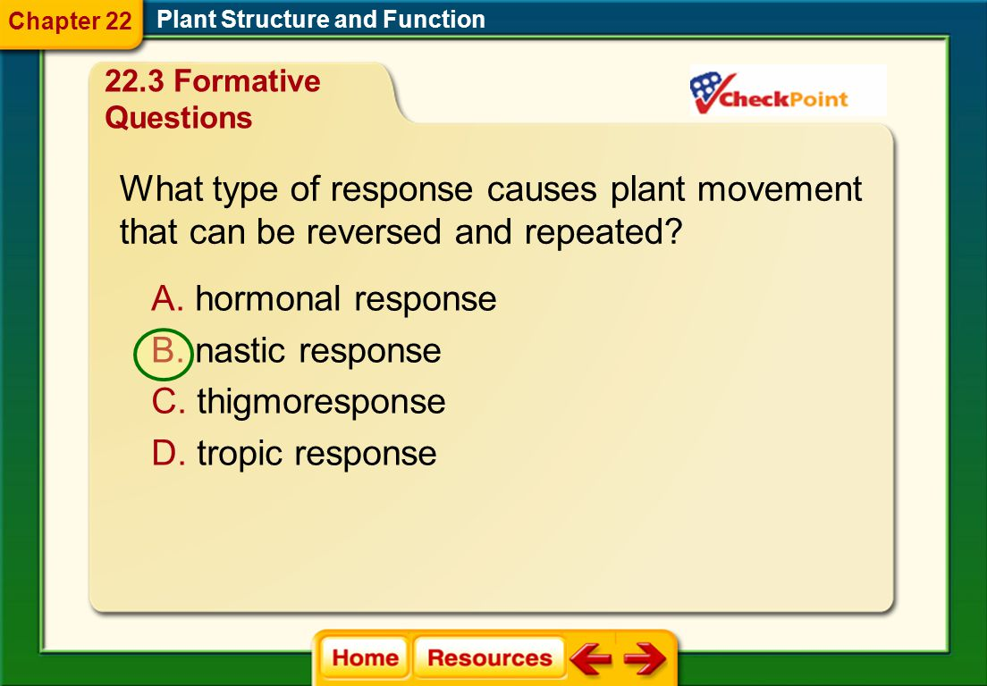 What type of response causes plant movement
