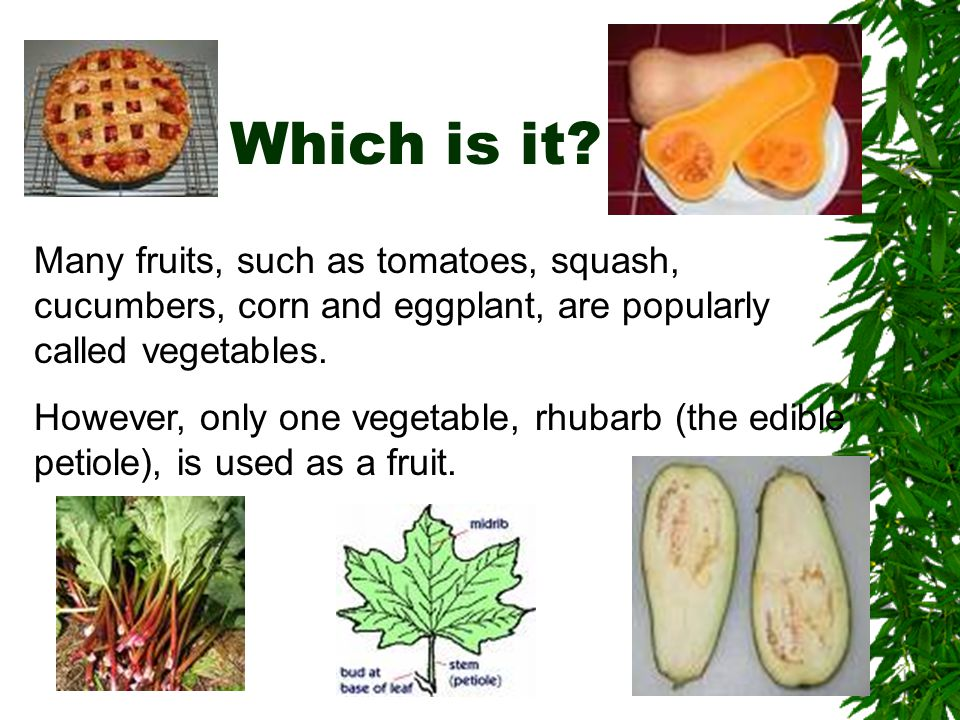 Which is it Many fruits, such as tomatoes, squash, cucumbers, corn and eggplant, are popularly called vegetables.