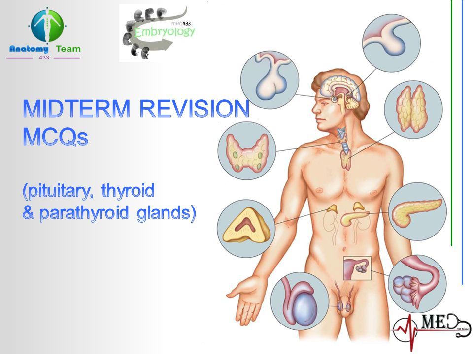 MIDTERM REVISION MCQs (pituitary, thyroid & parathyroid glands)