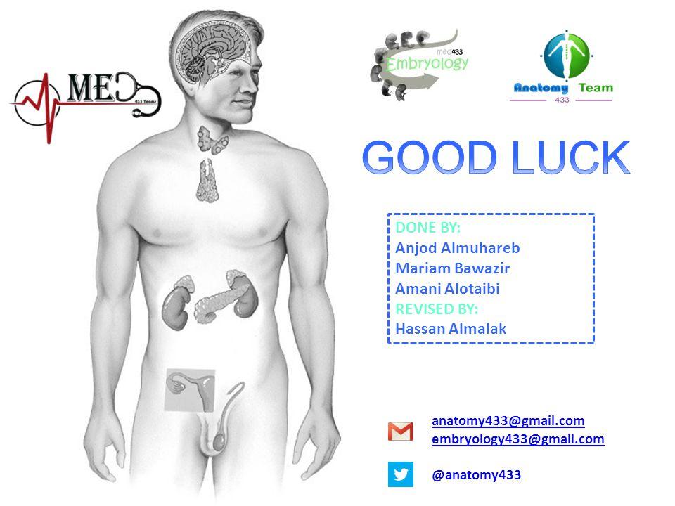 GOOD LUCK DONE BY: Anjod Almuhareb Mariam Bawazir Amani Alotaibi