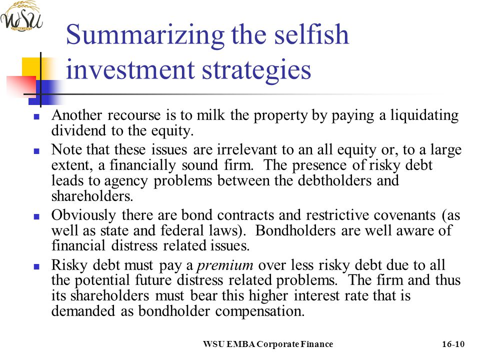 Summarizing the selfish investment strategies