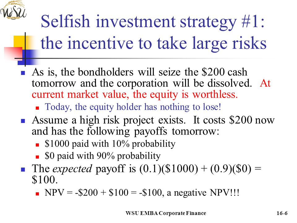 Selfish investment strategy #1: the incentive to take large risks