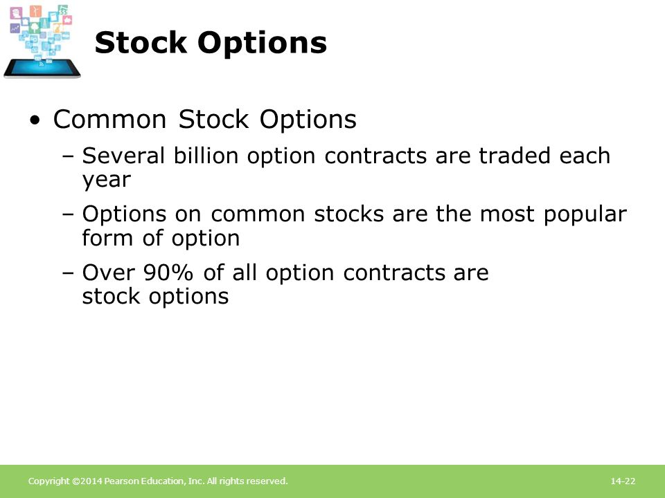 Stock Options Common Stock Options