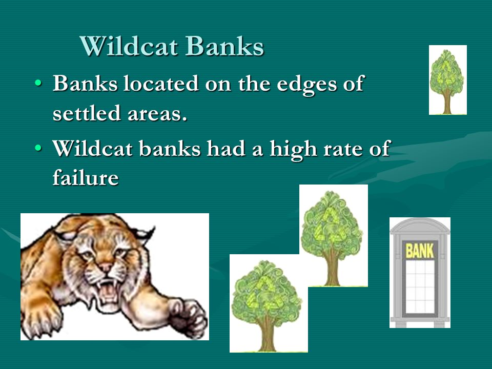 Wildcat Banks Banks located on the edges of settled areas.