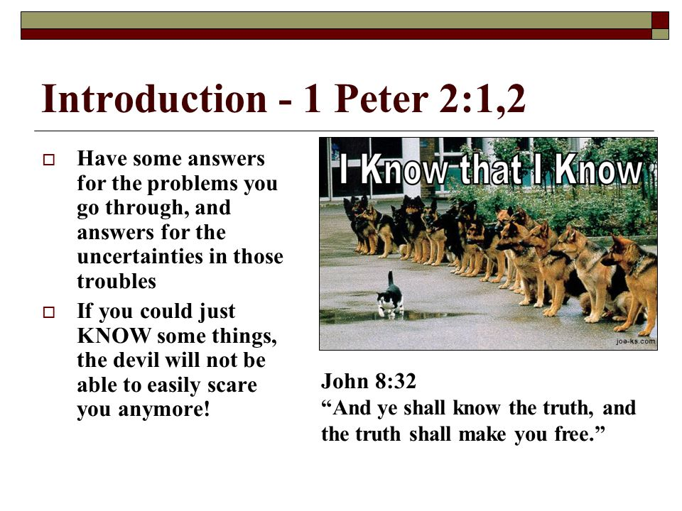 Introduction - 1 Peter 2:1,2 Have some answers for the problems you go through, and answers for the uncertainties in those troubles.