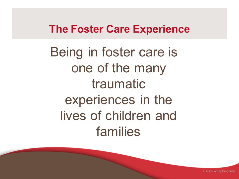 The Foster Care Experience